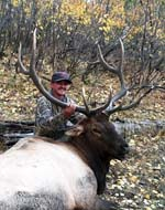 Big Smokepole Manti Bull for Kristopher