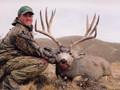 Hunt Nevada - Big Bucks, Bulls, Rams, and more.