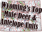 Wyoming's Top Mule Deer & Antelope Hunts