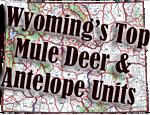 Wyoming's Top Mule Deer & Antelope Hunts
