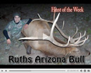 Ruth's Big Bull - Hunt of the Week Episode #17 at MonsterHuntClips.com