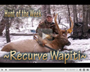 Damon's Trophy Recurve Bull - Hunt of the Week Episode #18 at MonsterHuntClips.com