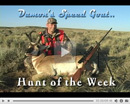 Damon's Speedgoat Hunt - Hunt of the Week Episode #22 at MonsterHuntClips.com
