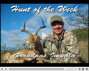 Hunt of the Week Episode #9 at MonsterHuntClips.com