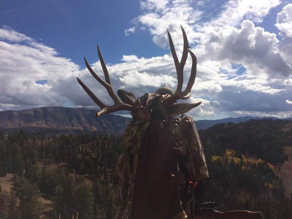 Monstermuleys Com Mule Deer Elk And Western Big Game