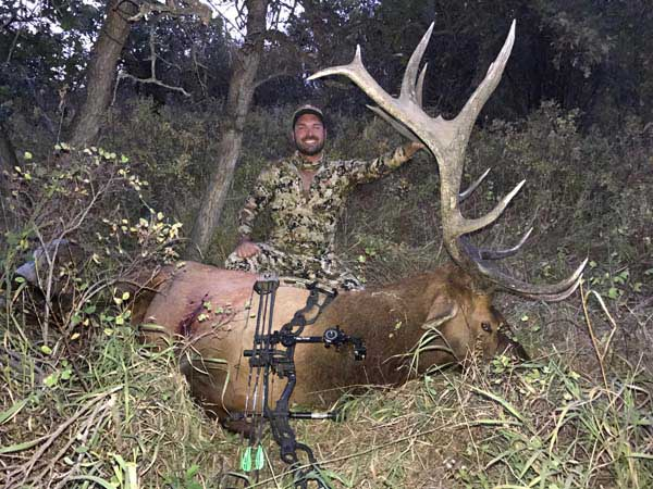 Justin's Colorado Stick-n-String Elk