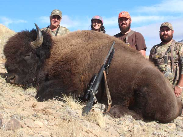 Henry Mountains Trophy Bison for John