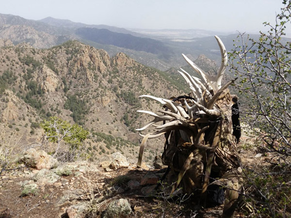 Great Day of Colorado Antler Hunting