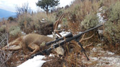 2015 Colorado Muley Hunt Success - Founder's Webcast