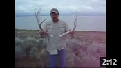 Antelope Island Shed Hunting