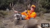 Bud's 30-Inch Wide Colorado Buck