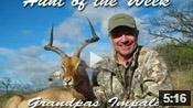 Cool Impala Hunt - HOTW #9