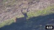 Early July Wyoming Scouting - Founder's Webcast