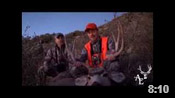 Great Colorado Muley Down! - HOTW #42