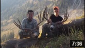 Monster Muley Crew Slams Big Bucks