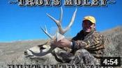 Mule Deer Hunt - HOTW #8