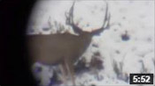 October Wyoming Rifle Hunt 2014 - Founder's Webcast