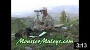 Wyoming Mule Deer Scouting Trip