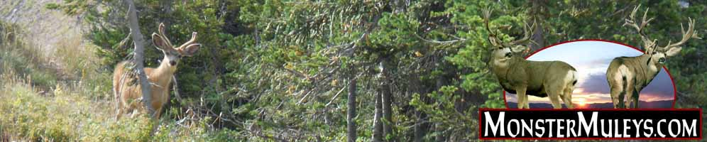 MonsterMuleys.com - Western Big Game, Mule Deer and Elk Hunting Social Media Site and Forums
