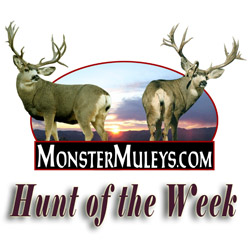 Hunt of the Week Podcasts