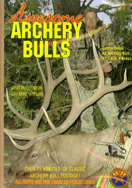 Awesome Archery Bulls