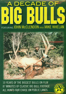 A Decade of BIG BULLS