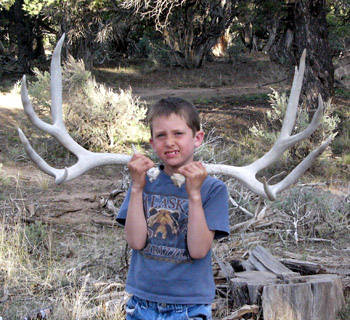 Shed Hunting & Spring Scouting